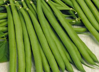 Lomami French Bean